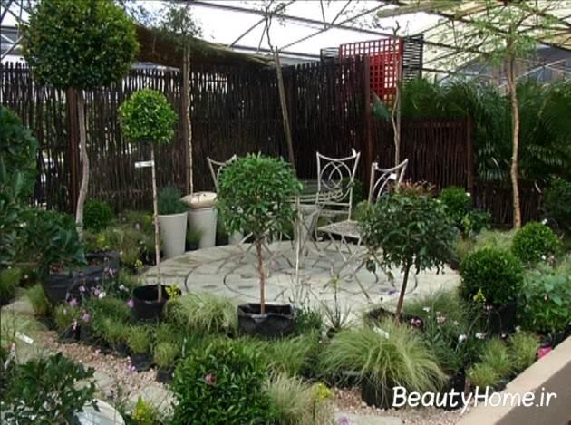 طراحی باغچه حیاط با درختان