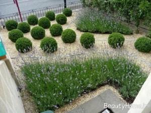 ایده های جذاب طراحی حیاط
