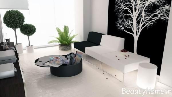 اتاق پذیرایی سفید و سیاه