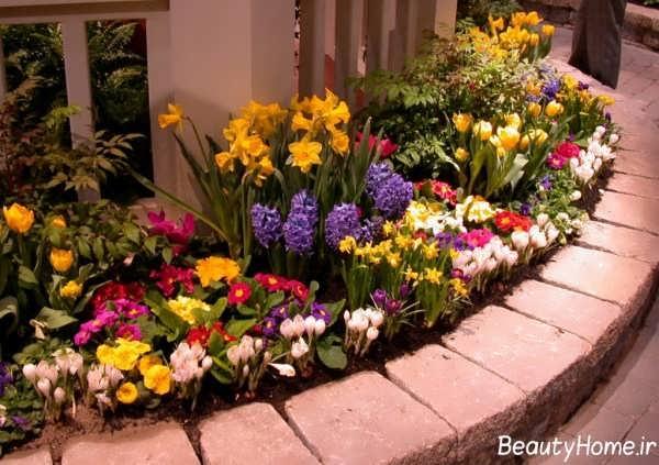 تزیین زیبا و رنگارنگ باغچه با انواع گل های زیبا