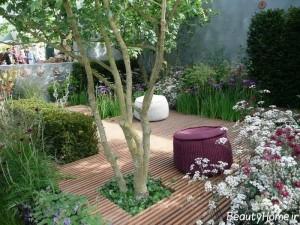 تزیینات متنوع و جذاب باغچه با گل و گیاهان جذاب و درخت