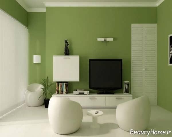 دکوراسیون سبز با طراحی زیبا و کاربردی