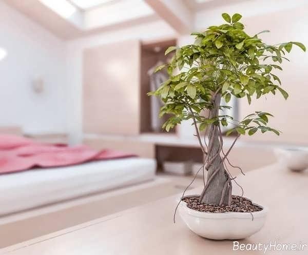 7 اصل فنگ شویی در اتاق خواب