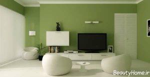 رنگ مناسب برای دیوار سالن پذیرایی