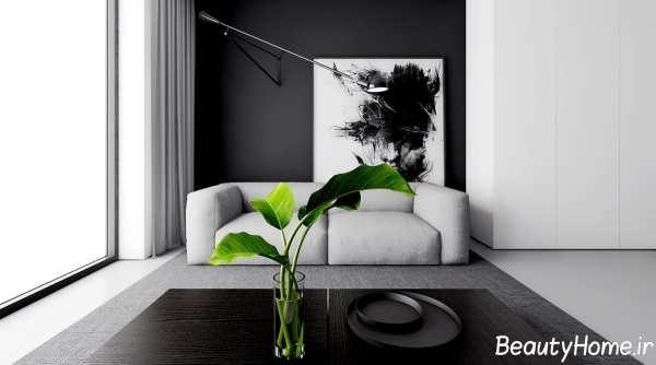 دکوراسیون داخلی سیاه و سفید سالن پذیرایی