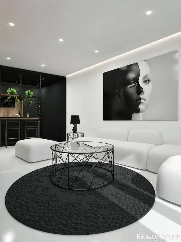 دکوراسیون پذیرایی سیاه و سفید با دیزاین شیک