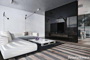 دکوراسیون پذیرایی سیاه و سفید با طراحی شیک