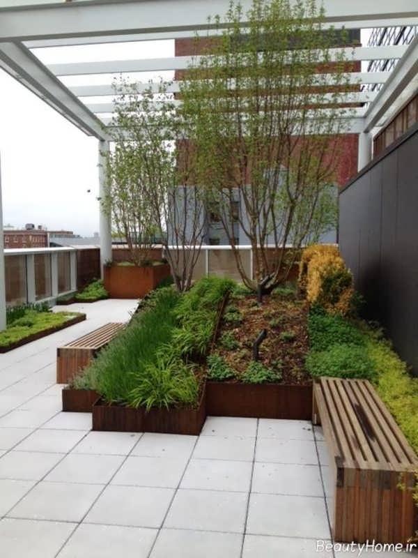 طراحی روف گاردن با گیاهان زیبا