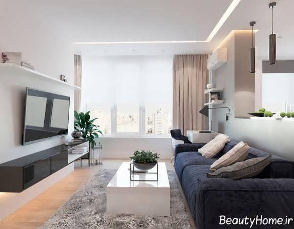 اتاق نشیمن آپارتمان خاص یک خوابه