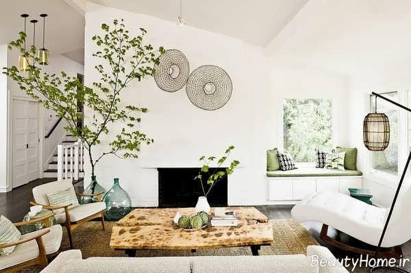 تزیین زیبا اتاق نشیمن با گیاهان سبز و زیبا