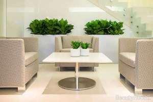 تزیین سالن پذیرایی با گل