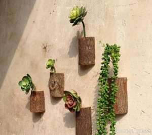 تزیین دیوار با گلدان های دیواری