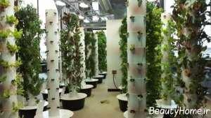 طراحی فوق العاده فضای سبز شهری