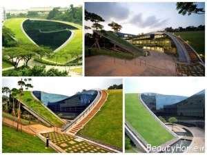 دیزاین متفاوت فضای سبز شهری