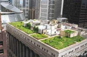 دیزاین فضای سبز شهری