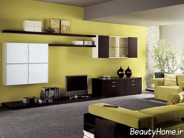رنگ زیبا برای دیوار پشت تلویزیون