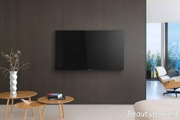 دکوراسیون زیبای دیوار پشت تلویزیون