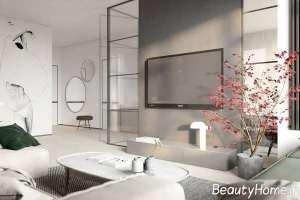 اتاق پذیرایی زیبا