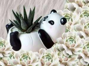 گلدان زیبا و فانتزی