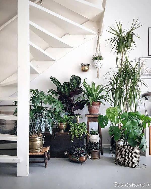 طراحی فضای سبز زیر راه پله ها