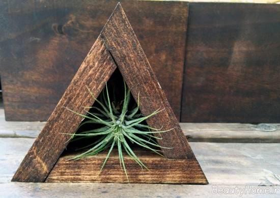 تزیین زیبا منزل با گیاه هوازی
