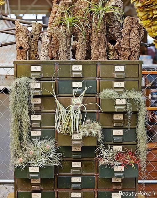 تزیین کمد قدیمی با گیاه هوازی
