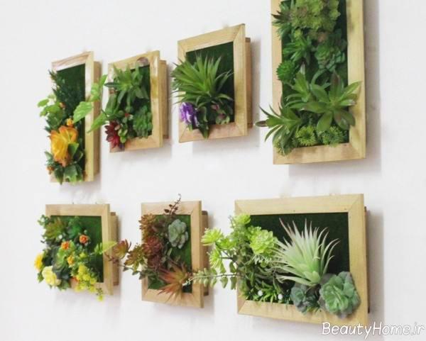 باغچه روی دیوار