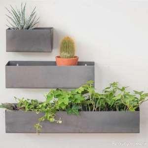 باغچه دیواری کوچک