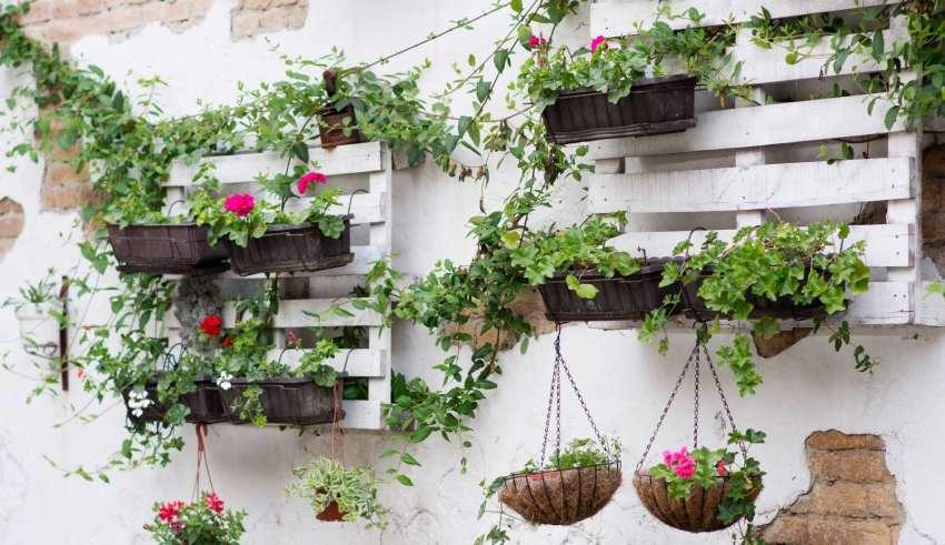 باغچه دیواری