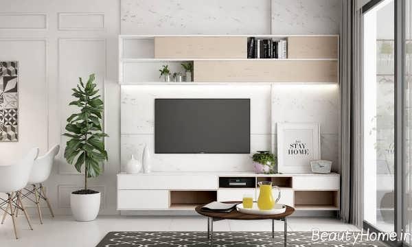 دکوراسیون کاربردی اتاق تلویزیون