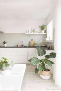 تزیین ساده پیشخوان برای آشپزخانه مدرن