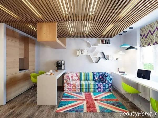 طراحی زیبا و کاربردی خانه دانشجویی