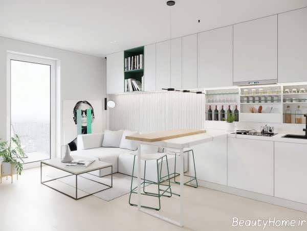 دیزاین خانه کوچک با رنگ سفید