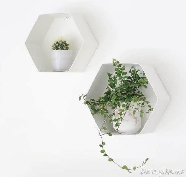 باکس دیواری سفید مخصوص گلدان