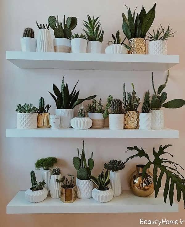 شلف دیواری ساده برای گلدان
