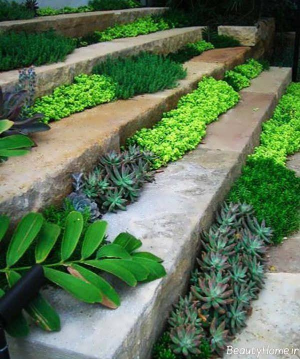 تزیین راه پله حیاط