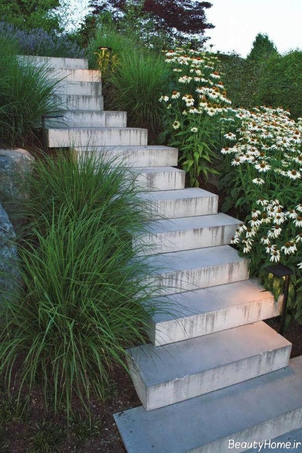 پله حیاط زیبا