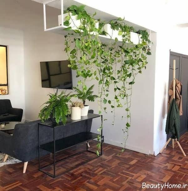 تاثیر گیاهان در دیزاین داخلی