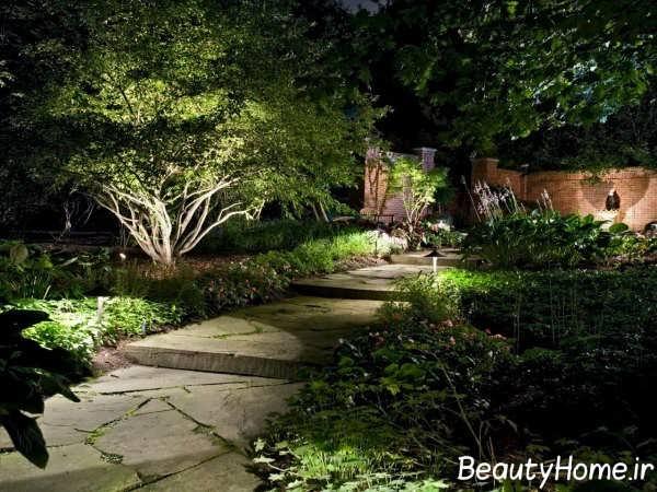 نورپردازی درختان حیاط